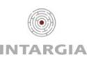 INTARGIA Managementberatung GmbH