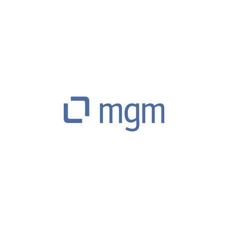 mgm consulting partners GmbH