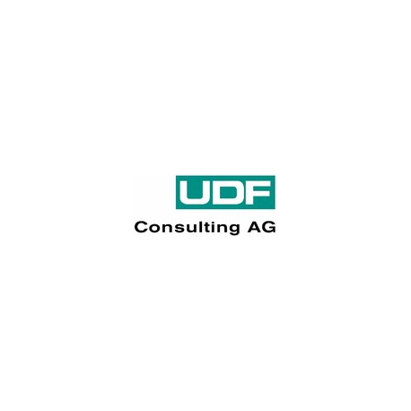 UDF Consulting AG