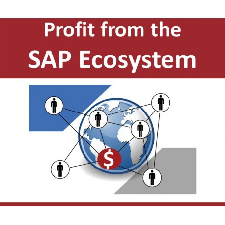Fachbuch: Profit from the SAP Ecosystem