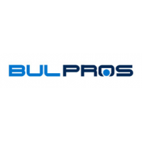 BulPros Consulting AG