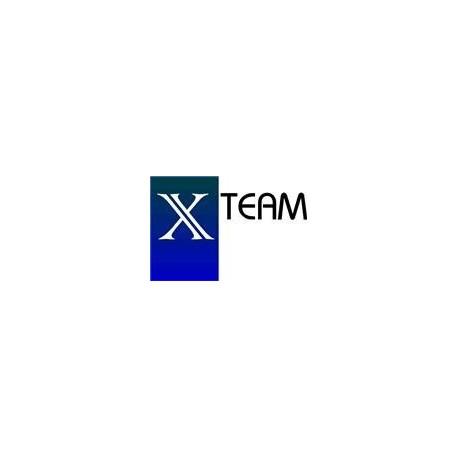 X-Team Consulting & Services GmbH
